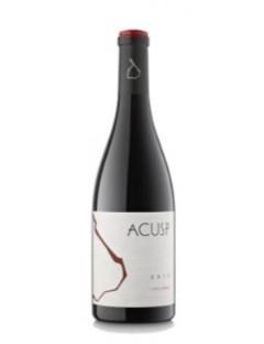 Castell d Encus Acusp 2013 0,75